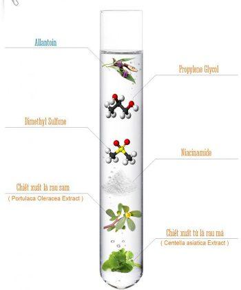 Thành phần chính của tinh chất Multi Complex Serum