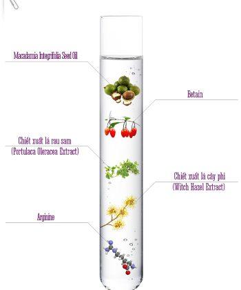 Thành phần chính Kem dưỡng làm trắng sáng Whitening Active Cream